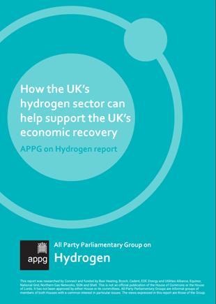 APG Hydrogen Report